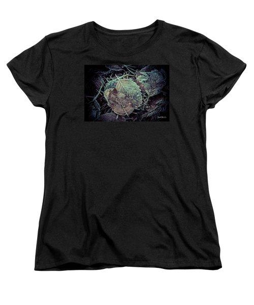 Frozen Women's T-Shirt (Standard Cut) by Charlie Duncan