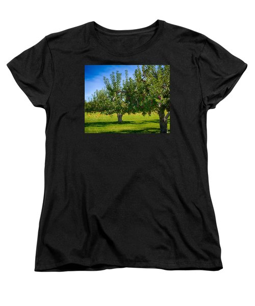 Fruits And Vegetables Women's T-Shirt (Standard Cut) by Fred Larson