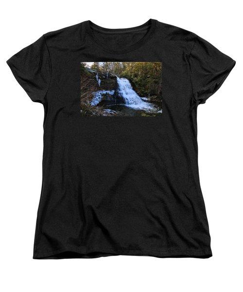 Fwozen Fawz Women's T-Shirt (Standard Cut) by Robert McCubbin