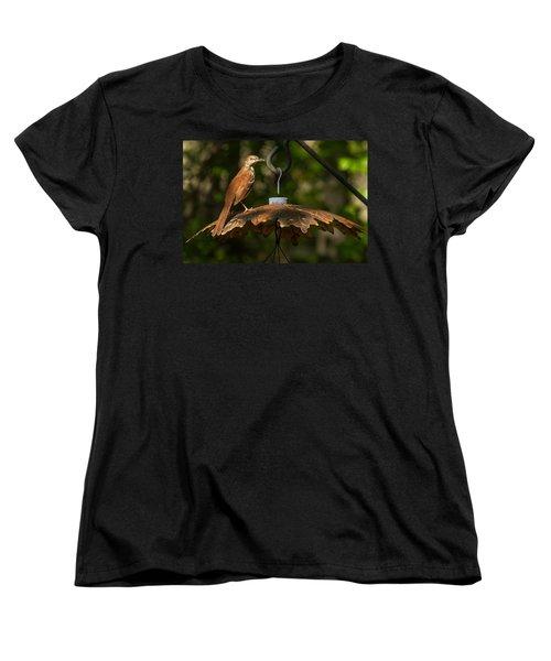 Women's T-Shirt (Standard Cut) featuring the photograph Georgia State Bird - Brown Thrasher by Robert L Jackson
