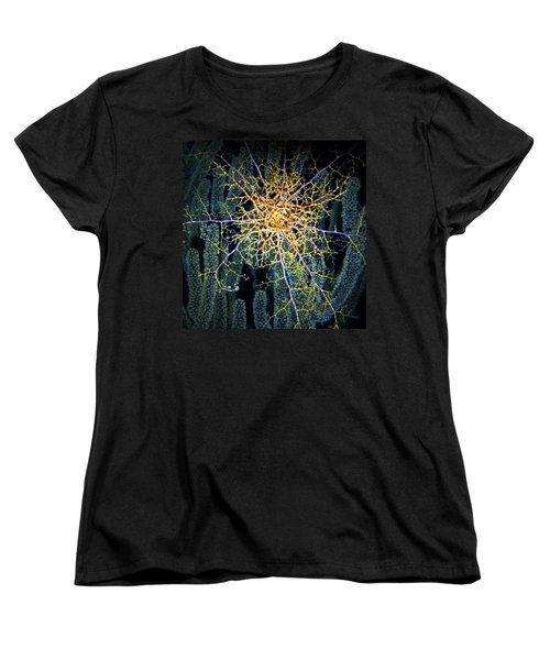Giant Basket Star At Night Women's T-Shirt (Standard Cut) by Amy McDaniel