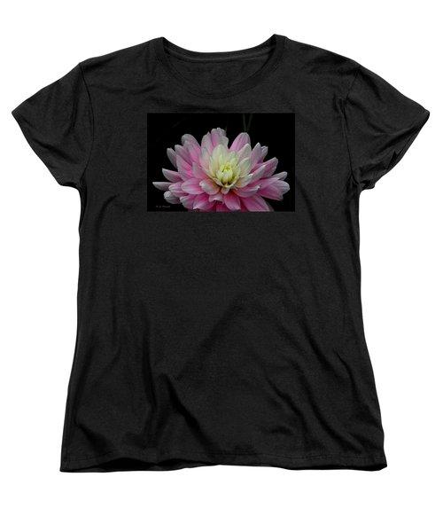 Glistening Dahlia Radiance Women's T-Shirt (Standard Cut) by Jeanette C Landstrom