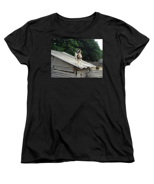 Women's T-Shirt (Standard Cut) featuring the photograph Goat On The Roof by Kerri Mortenson