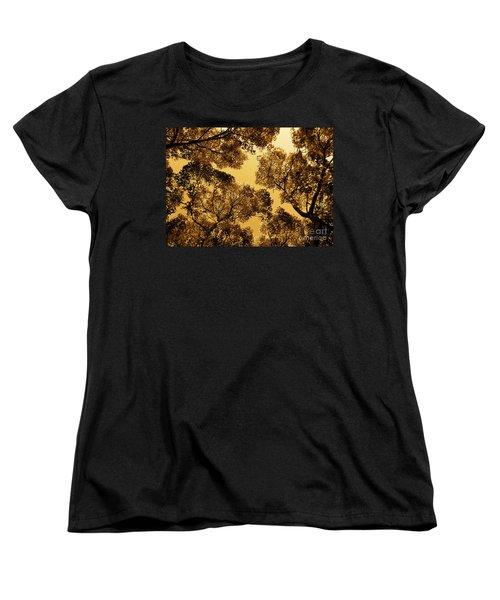 Golden Camphor Women's T-Shirt (Standard Cut) by CML Brown