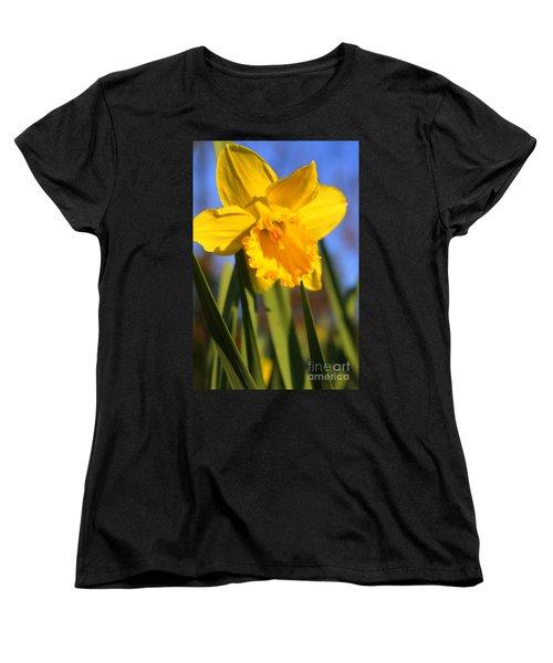 Golden Glory Daffodil Women's T-Shirt (Standard Cut) by Kathy  White