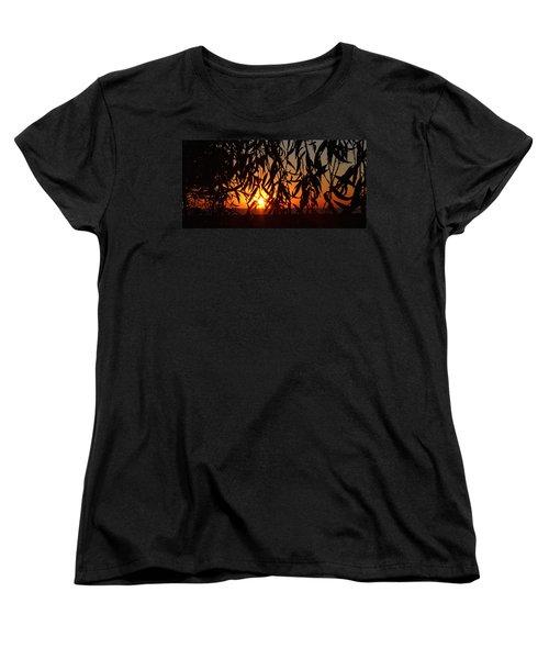 Good Morning Lake Michigan Women's T-Shirt (Standard Cut) by Tiffany Erdman