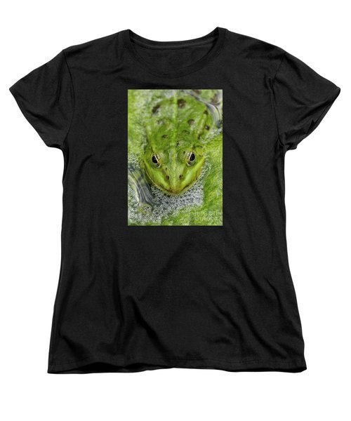 Green Frog Women's T-Shirt (Standard Cut) by Matthias Hauser