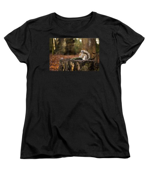 Grey Squirrel On A Stump Women's T-Shirt (Standard Cut) by Spikey Mouse Photography