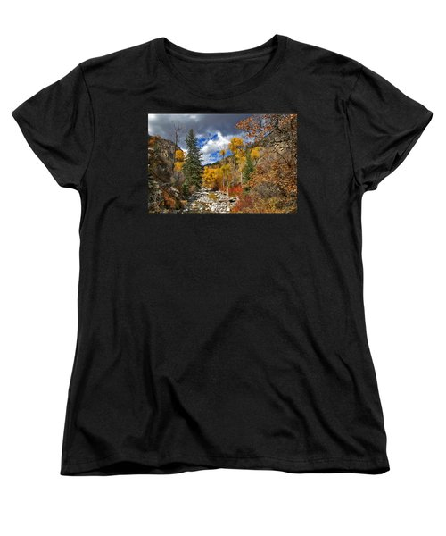 Grizzly Creek Cottonwoods Women's T-Shirt (Standard Cut) by Jeremy Rhoades