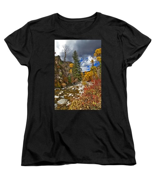 Women's T-Shirt (Standard Cut) featuring the photograph Grizzly Creek Vertical by Jeremy Rhoades