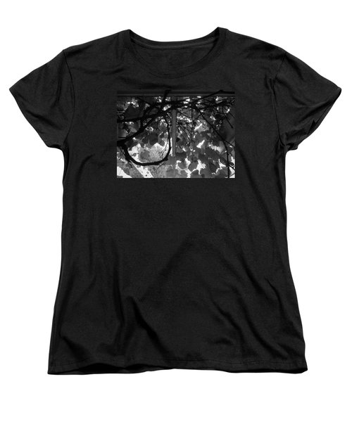 Women's T-Shirt (Standard Cut) featuring the photograph Gropius Vine - Black And White by Joseph Skompski