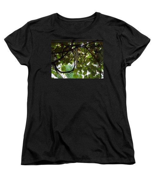 Women's T-Shirt (Standard Cut) featuring the photograph Gropius Vine by Joseph Skompski
