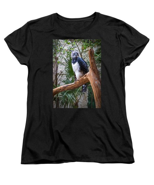 Harpy Eagle Women's T-Shirt (Standard Cut) by Ken Stanback