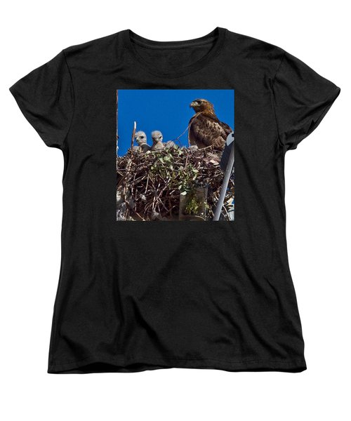 Women's T-Shirt (Standard Cut) featuring the photograph Hawk Babies by Brian Williamson