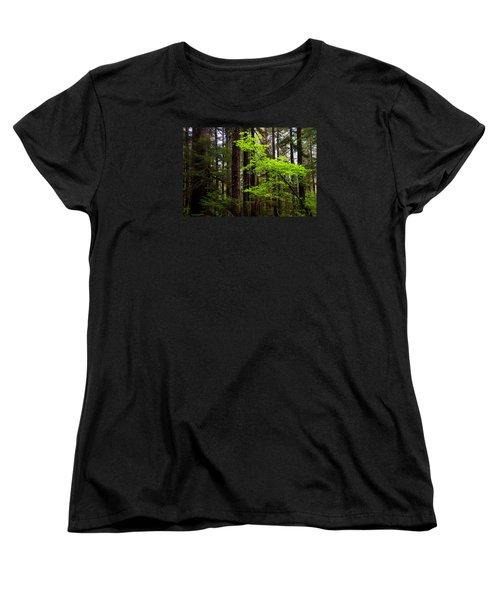 Highlight Women's T-Shirt (Standard Cut) by Chad Dutson