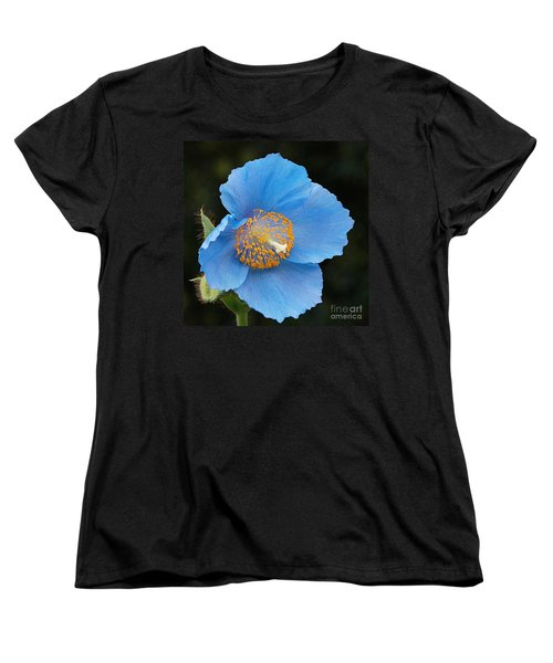 Himalayan Gift -- Meconopsis Poppy Women's T-Shirt (Standard Cut) by Byron Varvarigos