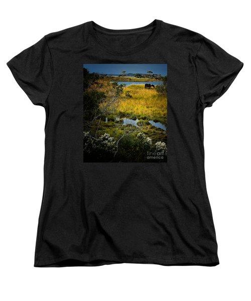 Home On The Range Women's T-Shirt (Standard Cut) by Robert McCubbin