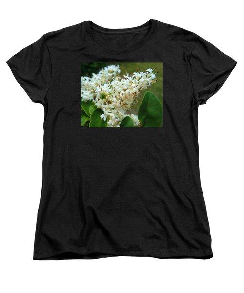 Women's T-Shirt (Standard Cut) featuring the photograph Honeysuckle #1 by Robert ONeil
