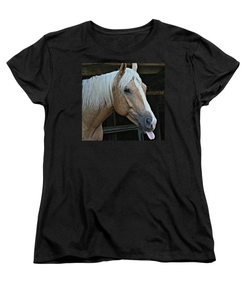 Horse Feathers Women's T-Shirt (Standard Cut) by Barbara S Nickerson