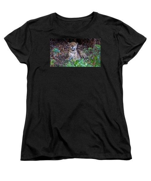 Hugo Waking 2 Women's T-Shirt (Standard Cut) by David Beebe
