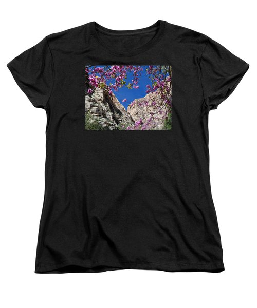 Women's T-Shirt (Standard Cut) featuring the photograph Ice Box Canyon In April by Alan Socolik