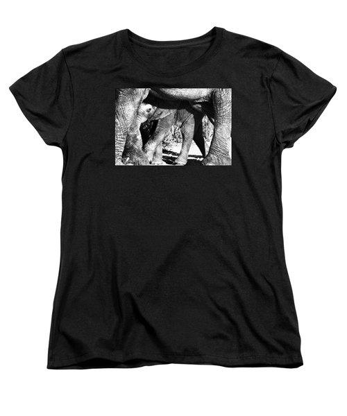 In Mother's Shadow Women's T-Shirt (Standard Cut) by Douglas Barnard