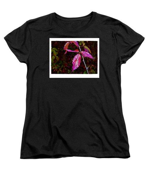 In The Briar Patch Women's T-Shirt (Standard Cut) by Judi Bagwell