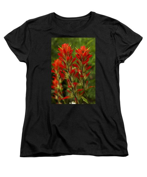 Indian Paintbrush Women's T-Shirt (Standard Cut) by Alan Vance Ley