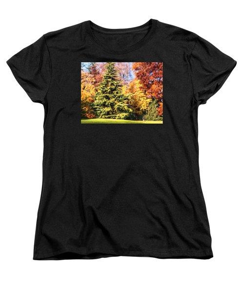 Into The Woods Women's T-Shirt (Standard Cut) by Muhie Kanawati