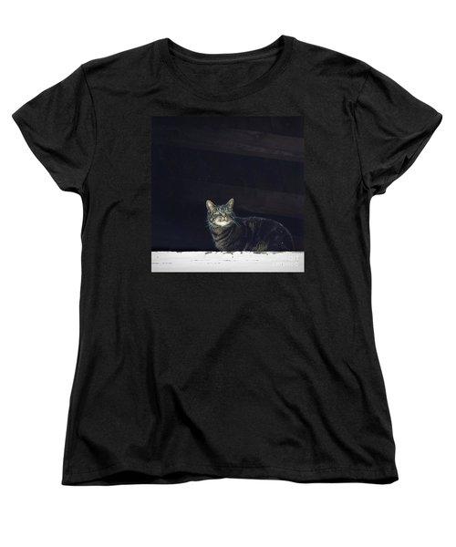 It's Snowing -- Looking Out The Barn Window Women's T-Shirt (Standard Cut) by Joy Nichols