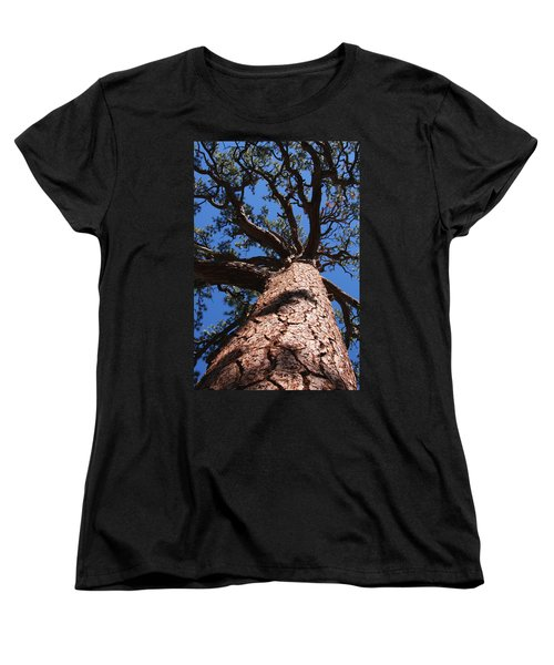 Jeffrey Pine Women's T-Shirt (Standard Cut) by Melinda Fawver