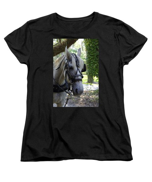Jekyll Horse Women's T-Shirt (Standard Cut) by Laurie Perry
