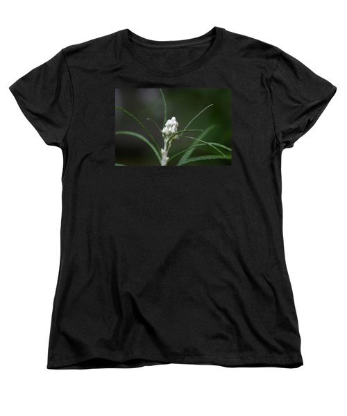 Just Budding Women's T-Shirt (Standard Cut) by Denyse Duhaime