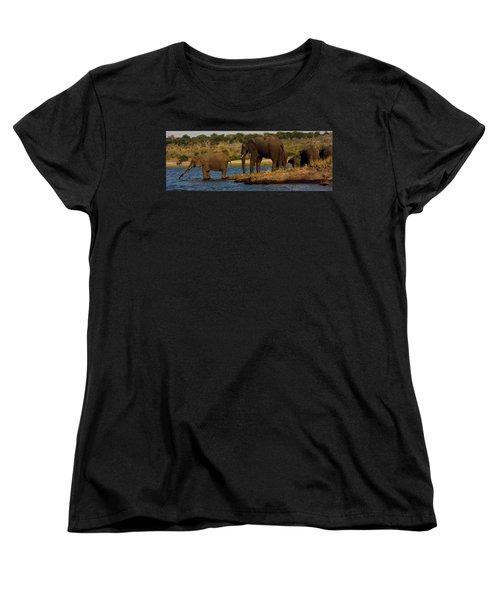 Women's T-Shirt (Standard Cut) featuring the photograph Kalahari Elephants Preparing To Cross Chobe River by Amanda Stadther