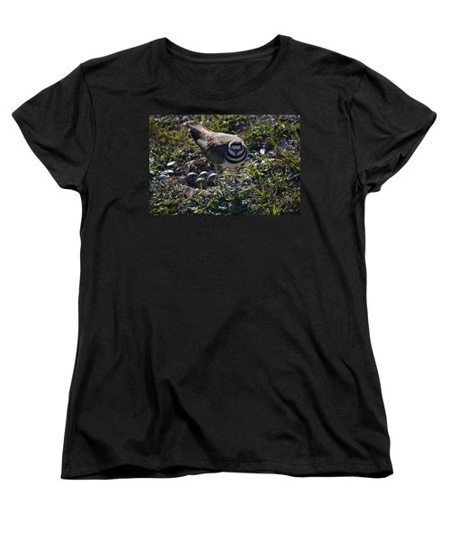 Killdeer Guarding Her Eggs Women's T-Shirt (Standard Cut) by Tara Potts