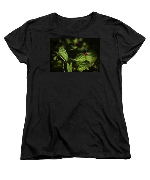 Women's T-Shirt (Standard Cut) featuring the photograph Ladybug by Bradley R Youngberg