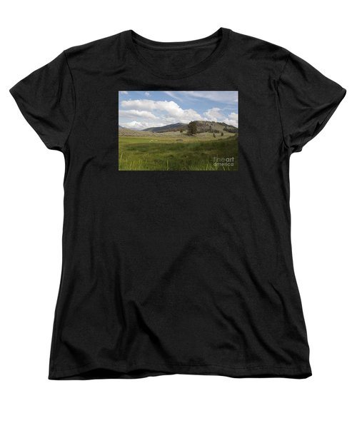 Lamar Valley No. 2 Women's T-Shirt (Standard Cut) by Belinda Greb
