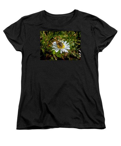 Landed Women's T-Shirt (Standard Cut) by Nina Ficur Feenan