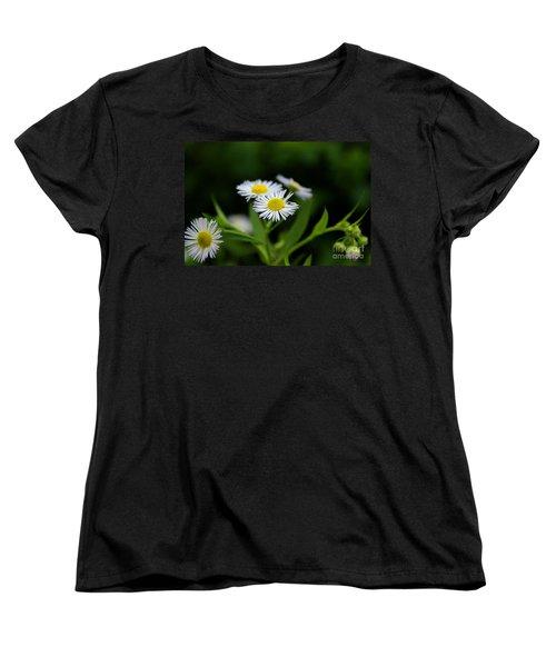 Late Summer Bloom Women's T-Shirt (Standard Cut)