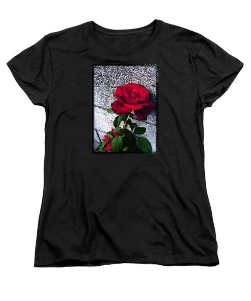 Women's T-Shirt (Standard Cut) featuring the photograph Late Summer Rose by Shawna Rowe