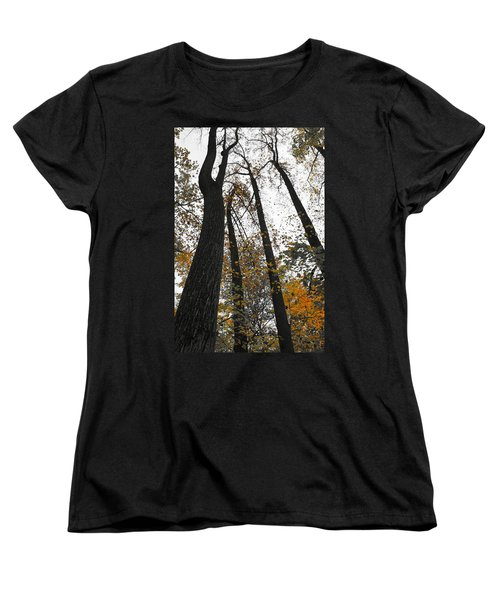 Leaves Lost Women's T-Shirt (Standard Cut) by Photographic Arts And Design Studio