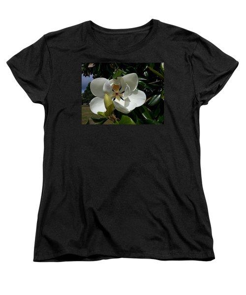 Lemon Magnolia Women's T-Shirt (Standard Cut) by Caryl J Bohn