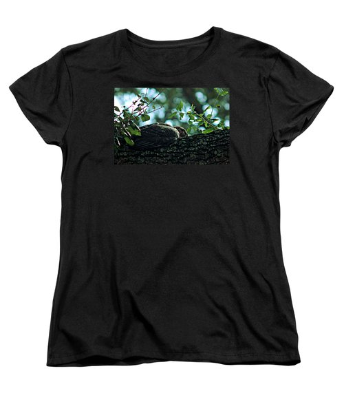 Let Sleeping Hawks Lie Women's T-Shirt (Standard Cut) by Greg Allore