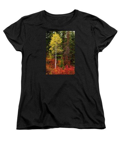 Lone Aspen In Fall Women's T-Shirt (Standard Cut) by Chad Dutson