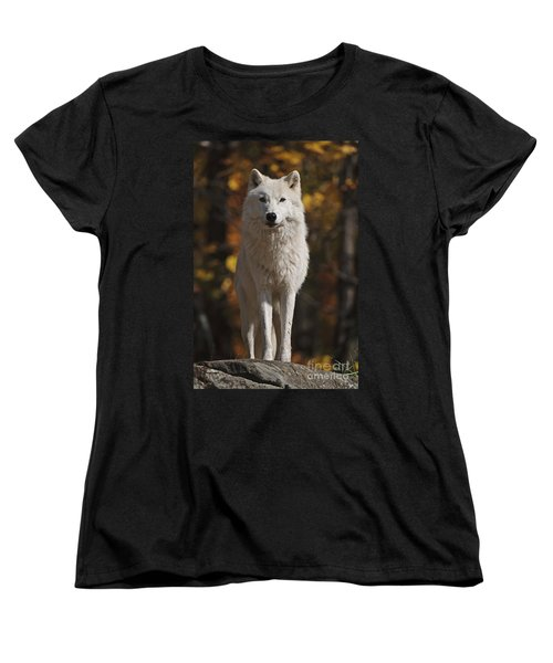 Women's T-Shirt (Standard Cut) featuring the photograph Look Out by Wolves Only