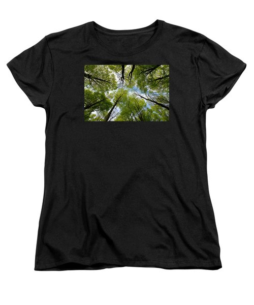 Looking Up Women's T-Shirt (Standard Cut) by Ron Harpham