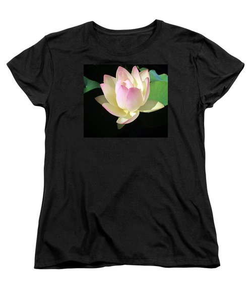 Lotus 9 Women's T-Shirt (Standard Cut) by Dawn Eshelman