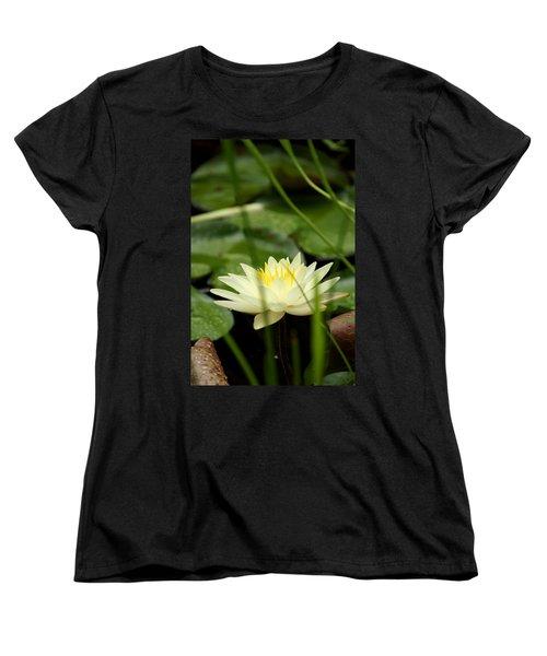 Lust Women's T-Shirt (Standard Cut) by Kim Pate