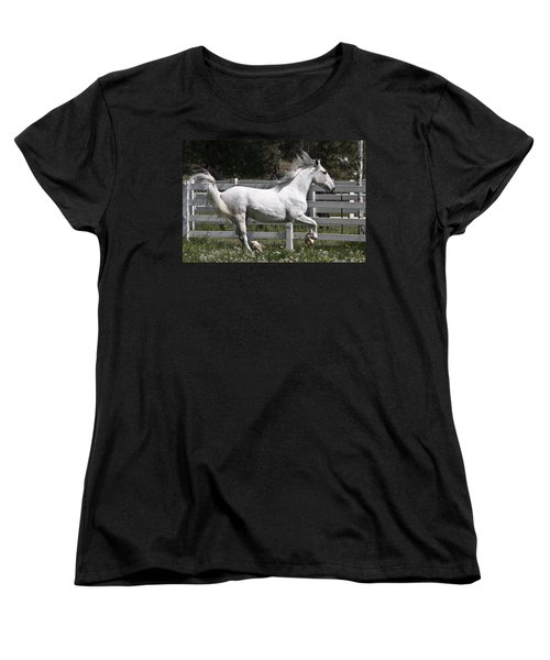Maestoso Aurorra Women's T-Shirt (Standard Cut) by Wes and Dotty Weber