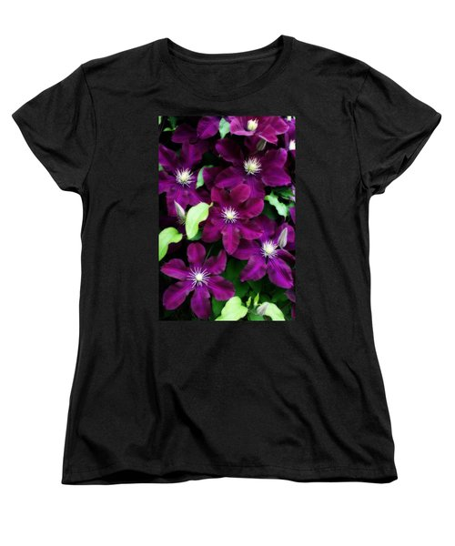 Majestic Amethyst Colored Clematis Women's T-Shirt (Standard Cut) by Kay Novy